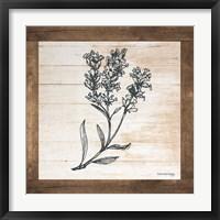 Framed Petals on Planks - Lavender