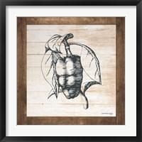 Framed Petals on Planks - Pepper