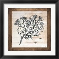 Framed Petals on Planks - Cumin