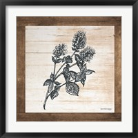 Framed Petals on Planks - Mint