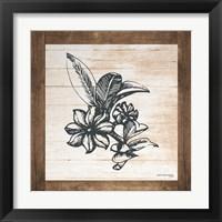 Framed Petals on Planks - Anise