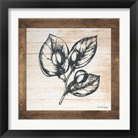 Framed Petals on Planks - Capers