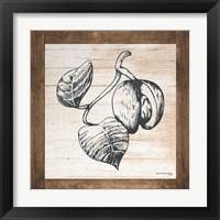 Framed Petals on Planks - Nutmeg