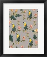 Framed Macaw Pattern