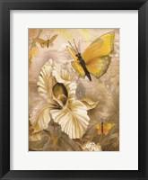 Framed Flower & Butterflies I