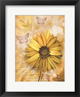 Framed Flower & Butterflies II