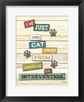 Framed Cat Intervention
