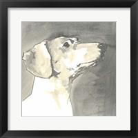Framed Sepia Modern Dog IV