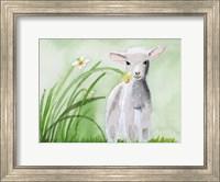 Framed Baby Spring Animals IV