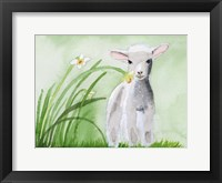 Framed Baby Spring Animals IV