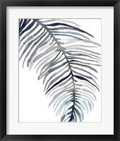Framed Blue Feathered Palm II