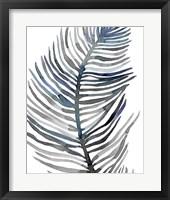 Framed Blue Feathered Palm III