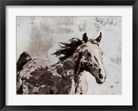 Framed Winner Horse II