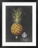 Framed Royal Brookshaw Pineapple II