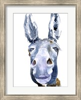 Framed Sweet Donkey I