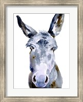 Framed Sweet Donkey II