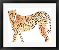 Framed Majestic Cheetah II