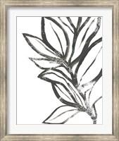 Framed Leaf Instinct II