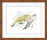 Framed Watercolor Sea Turtle Study I