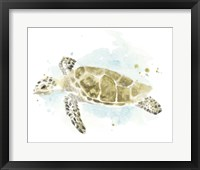 Framed Watercolor Sea Turtle Study II
