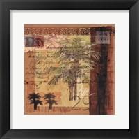 Framed Circa Palm II