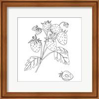 Framed Wild Strawberries II