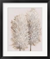 Framed Pampas Grass III