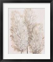 Framed Pampas Grass IV