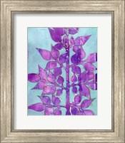 Framed Purple Planta I