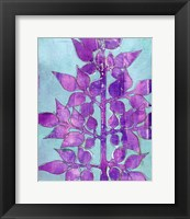 Framed Purple Planta I