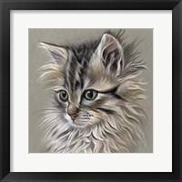 Framed Kitten Portrait I