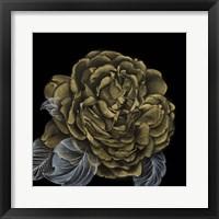 Framed River Roses II