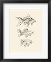 Framed Goldfish I