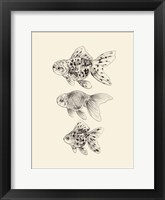 Goldfish II Framed Print