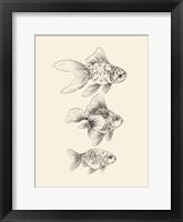 Framed Goldfish III