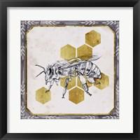 Pursue Sweetness III Framed Print