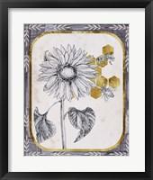 Pursue Sweetness V Framed Print