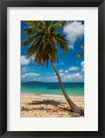 Framed Cramer Park Beach, St Croix, US Virgin Islands