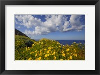 Framed Europe, Greece, Santorini Wildflowers And Ocean Landscape