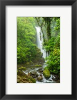 Framed Costa Rica, La Paz Waterfall Garden Rainforest Waterfall And Stream