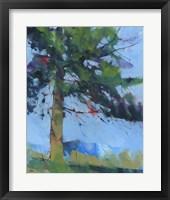 Framed Gilfach Pine