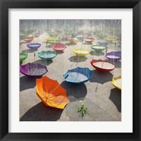 Framed Downpour