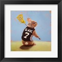 Framed Lax Bunny