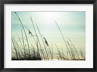 Framed Coastal