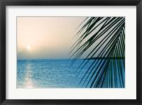 Framed Palm