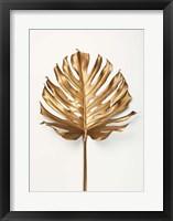 Framed Monstrea Gold Leaf