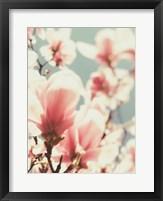 Framed Paris Petals 1