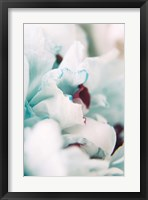 Framed Paris Petals 2