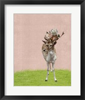 Framed Buck on Pink