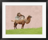 Framed Camel on Pink